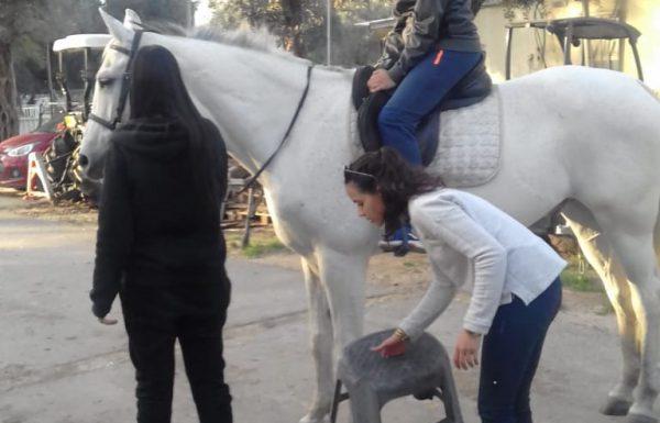 סדנת רכיבה טיפולית לבני נוער בגבעת שמואל