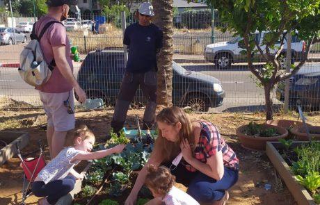 צומחים מהמשבר: תושבי העיר ניצלו את תקופת הקורונה לשתילת ירקות ועצי נוי בגינה הקהילתית בעיר