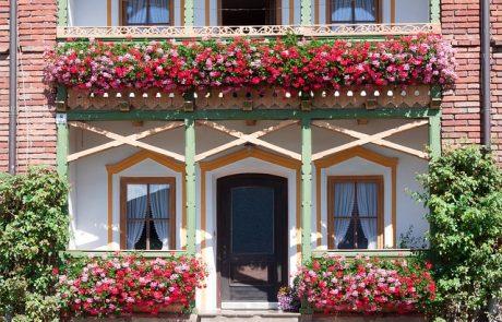 איך לנקות את הגינה והמרפסת