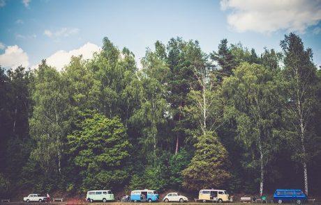 כמה דברים שכדאי לדעת לפני חופשה משפחתית ביער השחור